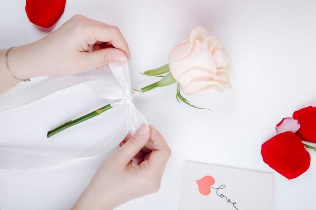 Draufsicht der weiblichen hände, die einen weißen bandbogen auf einer rosenblume am weißen hintergrund binden