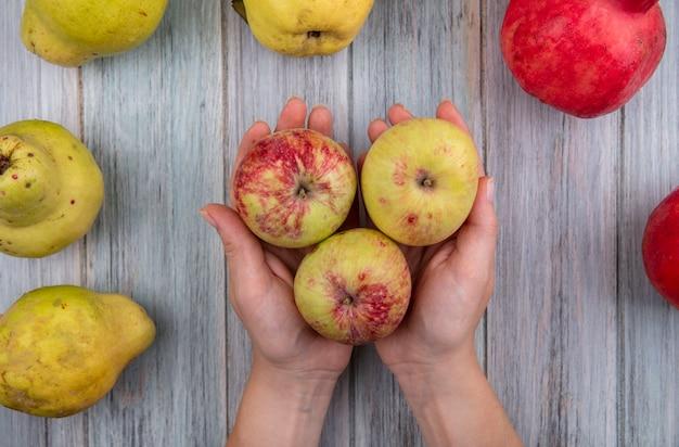 Draufsicht der weiblichen hände, die frische äpfel auf einem grauen hölzernen hintergrund halten