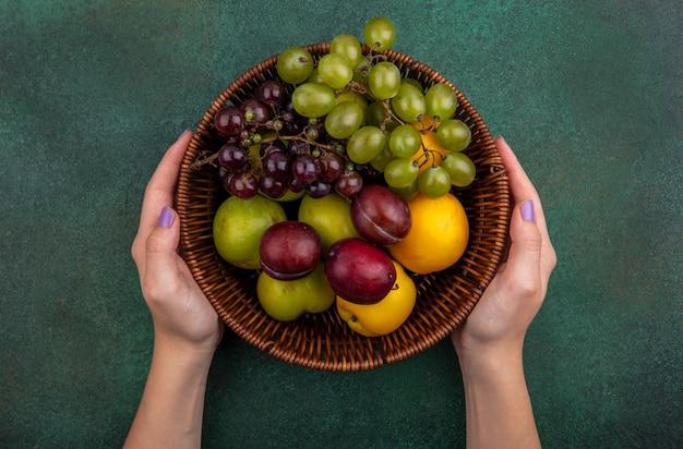 Draufsicht der weiblichen hände, die korb von früchten als traubennektakot und pluots auf grünem hintergrund halten