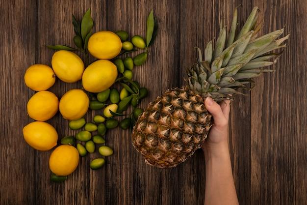 Draufsicht der weiblichen hand, die ananas mit zitronen und kinkans hält, die auf einer hölzernen oberfläche lokalisiert werden