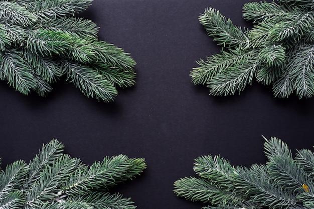 Draufsicht der weihnachtsbaumzweige