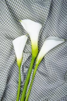 Draufsicht der weißen farbe callalilien lokalisiert auf kariertem stoffhintergrund