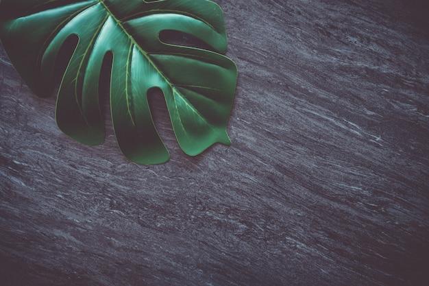 Draufsicht des abstrakten hintergrunds der dunkelgrauen schwarztonmarmorstruktur mit grünem natürlichem blatt als rahmen.