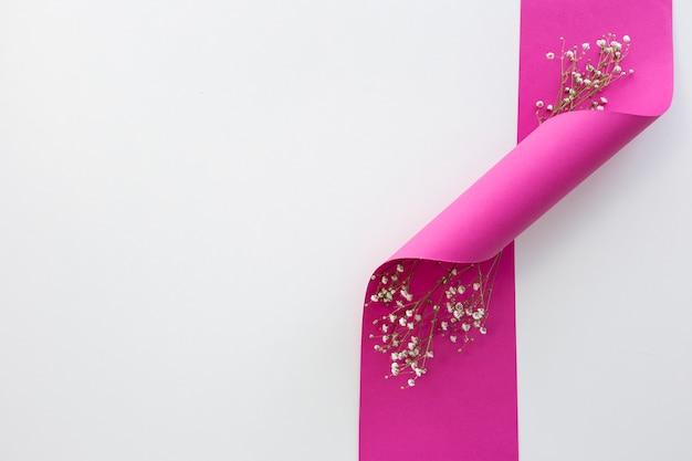 Draufsicht des atems des babys blüht mit verdrehtem rosa band gegen weißen hintergrund