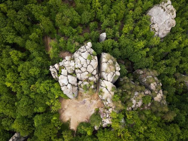 Draufsicht des berggrünen sommerwaldes und des einsamen felsens
