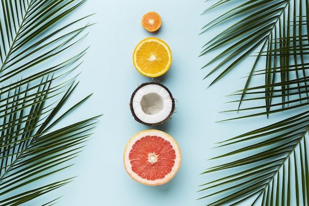 Draufsicht des fruchtkonzepts mit blättern