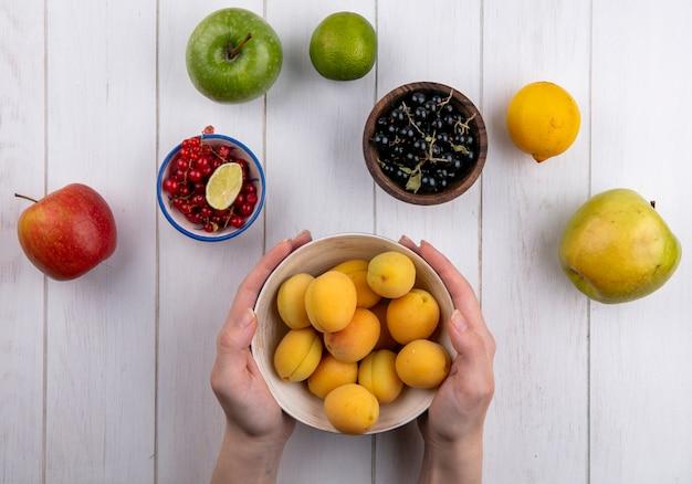 Draufsicht des mädchens hält aprikosen in einer schüssel mit äpfeln und schwarzen und roten johannisbeeren auf einer weißen oberfläche