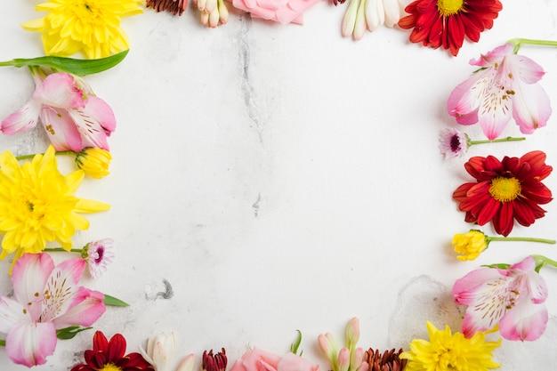 Draufsicht des mehrfarbigen frühlingsblumenrahmens