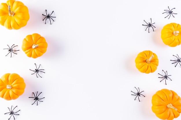 Draufsicht des orange kürbises und der spinne auf weißem hintergrund. kopieren sie platz für text. halloween-konzept.