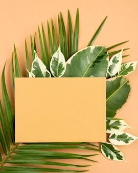 Draufsicht des papiers mit pflanzenblättern