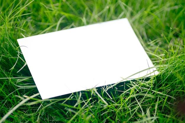 Draufsicht des rahmens aus grünem gartengras und kopienraum auf weißem hintergrund. grüne blätter mit papierkarte. natürliches konzept.