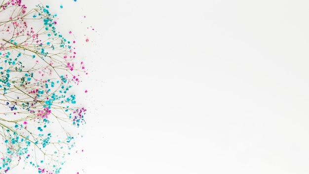 Draufsicht des schönen blumenkonzepts mit kopierraum