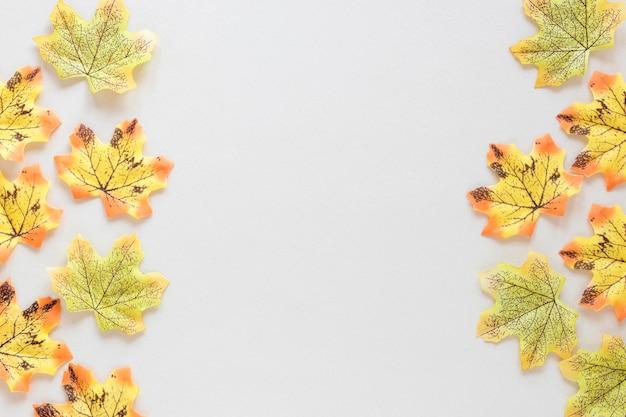 Draufsicht des schönen naturkonzepts mit kopierraum