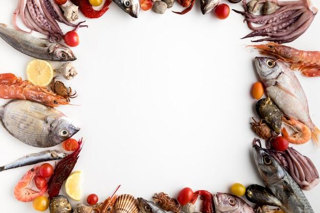 Draufsicht des sortiments des meeresfrüchterahmens