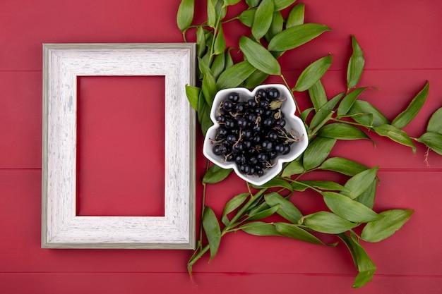 Draufsicht des weißen rahmens mit schwarzen johannisbeeren und blattzweigen auf einer roten oberfläche