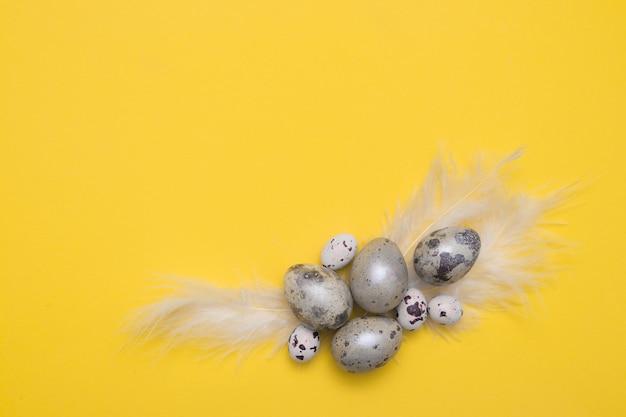 Draufsicht eier und federn auf gelbem papier