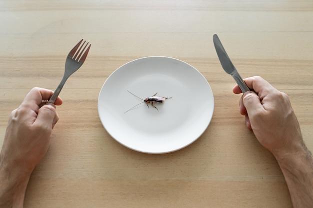 Draufsicht, ein mann, der eine kakerlake isst. kakerlake in einem weißen teller auf dem küchentisch. seltsame geschmackspräferenzen