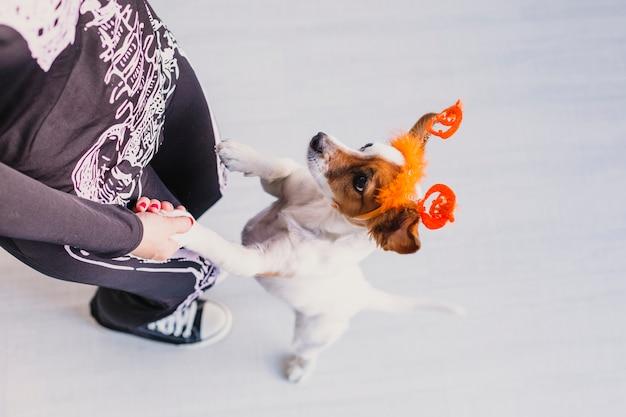 Draufsicht einer jungen frau mit ihrem niedlichen kleinen hund, der ein kürbisdiadem trägt. frau, die ein skelettkostüm trägt. halloween-konzept. drinnen