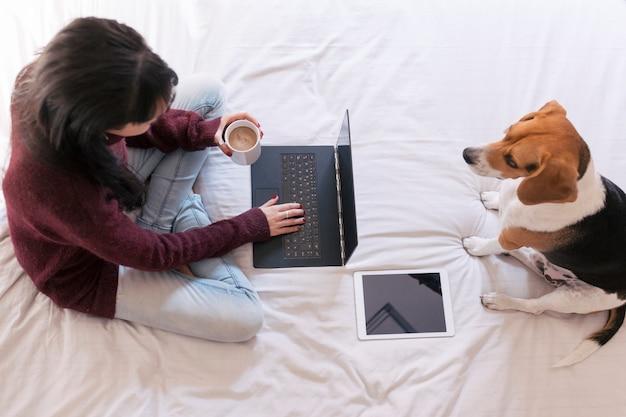Draufsicht einer jungen schönheit, die auf bett sitzt und an laptop arbeitet. eine tasse kaffee in der hand. tablette und netter spürhundhund außerdem. zuhause drinnen