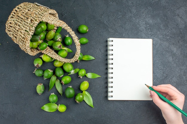 Draufsicht frische feijoas im korbstift in weiblicher hand auf notizbuch auf dunkler oberfläche