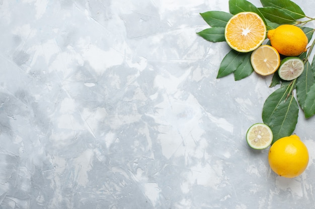 Draufsicht frische zitronen saftig und sauer auf dem hellen schreibtisch zitrusfrüchte exotische saure früchte