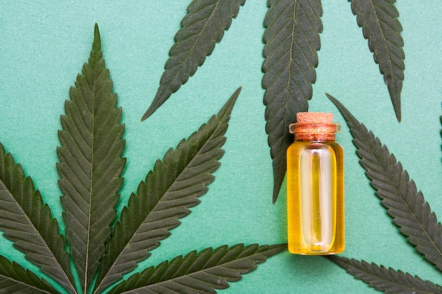 Draufsicht glasflasche mit cannabisöl nahe pflanze