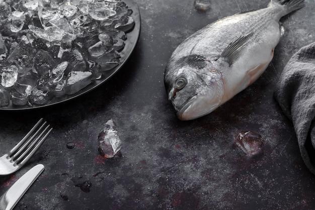 Draufsicht köstliches meeresfrüchtesortiment