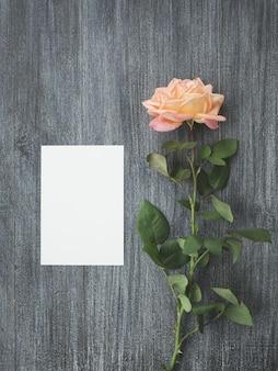 Draufsicht leere grußkarte mit einer rose