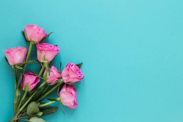 Draufsicht lokalisierte rosenblumen auf blauem kopienraumhintergrund