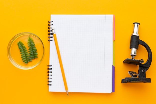 Draufsicht mit studiengegenständen