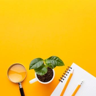 Draufsicht pflanzen- und studiengegenstandsrahmen