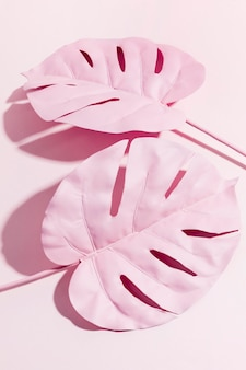 Draufsicht rosa palmblätter