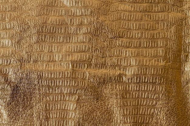 Draufsicht schlangenhaut textur