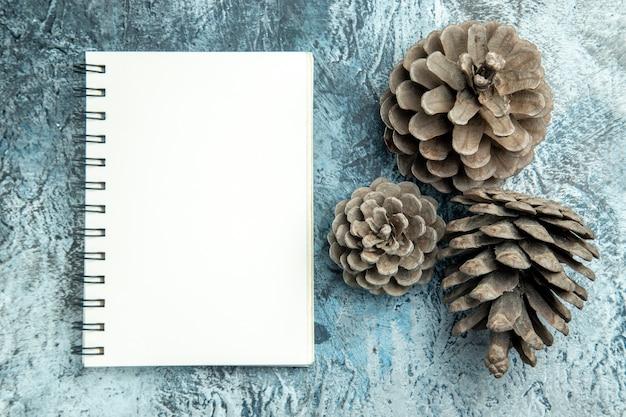 Draufsicht tannenzapfen ein notizbuch auf grauer oberfläche