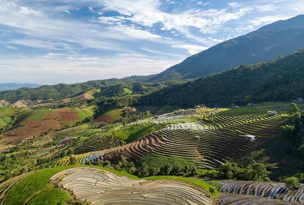 Draufsicht terrassenförmig angelegtes reisfeld bei mae cham chiangmai nordthailand