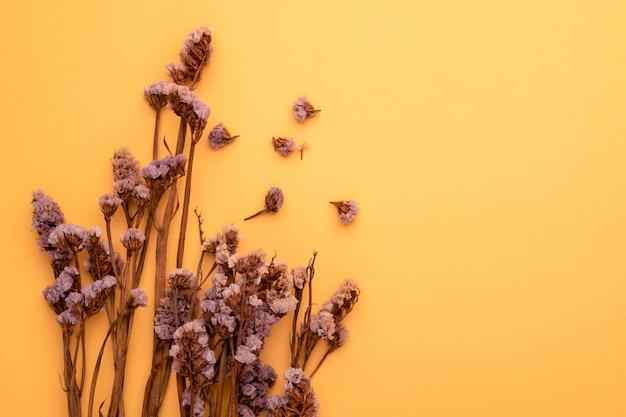 Draufsicht trockene farbe grasblume für innendekoration.