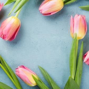 Draufsicht tulpenrahmen auf tisch