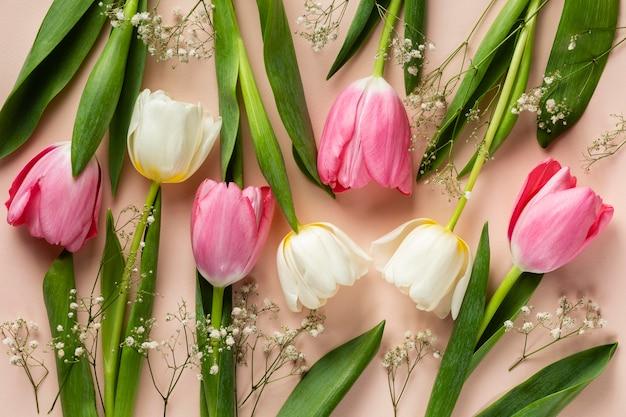 Draufsicht tulpensammlung