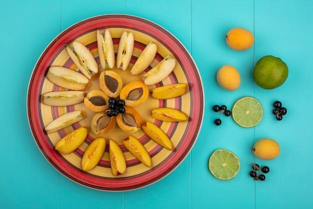 Draufsicht von aprikosenscheiben mit äpfeln und pfirsich auf einem teller mit limette und schwarzer johannisbeere auf einer blauen oberfläche