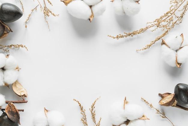 Draufsicht von baumwollblumen
