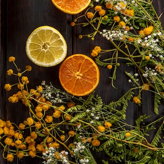 Draufsicht von blumen mit zitrusfrüchten
