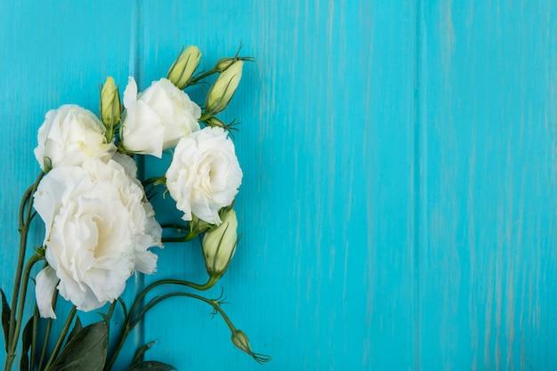 Draufsicht von erstaunlichen weißen rosen mit blättern auf einem blauen hintergrund mit kopienraum