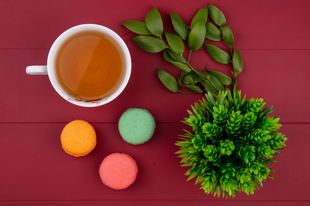 Draufsicht von farbigen macarons mit einer tasse tee und blattzweigen auf einer roten oberfläche