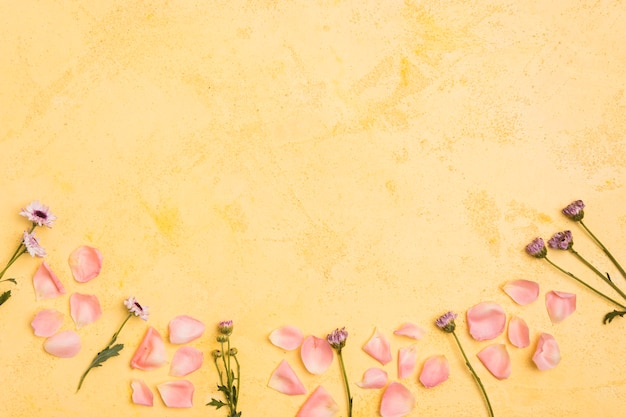 Draufsicht von frühlingsgänseblümchen und von rosafarbenen blumenblättern mit kopienraum