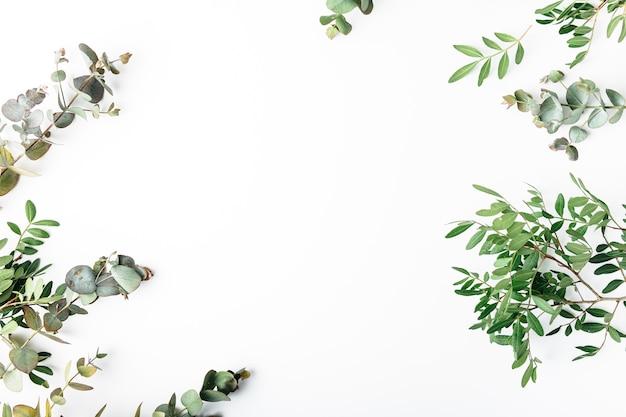 Draufsicht von grünen blättern