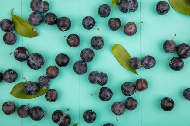 Draufsicht von kleinen bläulich-schwarzen schlehen mit blättern lokalisiert auf einem blauen hintergrund