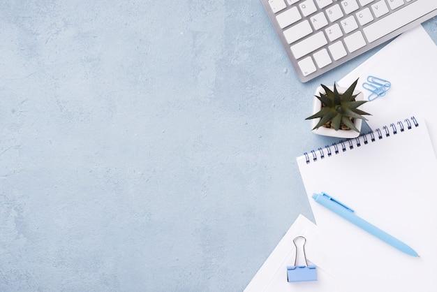Draufsicht von notizbüchern auf schreibtisch mit saftiger anlage und stift