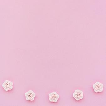 Draufsicht von rosa frühlingsrosen mit kopienraum