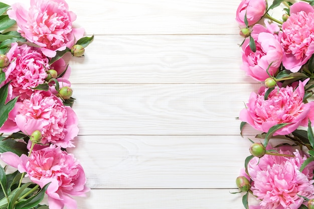 Draufsicht von rosa pfingstrosen mit kopienraum