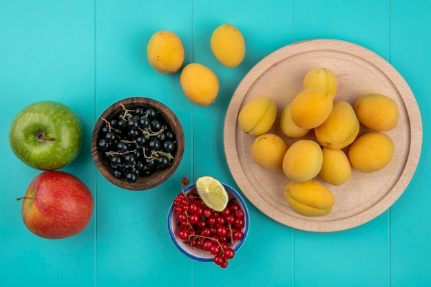 Draufsicht von roten und schwarzen johannisbeeren in einer schüssel mit aprikosen auf einem ständer und äpfeln auf einer blauen oberfläche